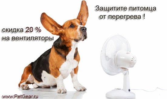 Интернет-зоомагазин Pet Gear - Страница 8 A8dcd38931cf