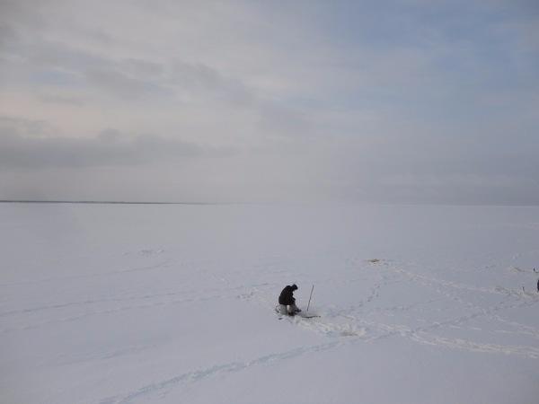 Белое море - вот ты какое.... - Страница 12 28c35fbcd104