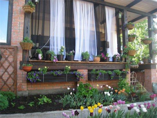 Цветы на балконе. - Страница 6 B740cf4d580d