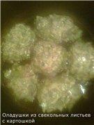Оладушки из свекольных листьев с картошкой 49fb58b4d2e2t