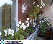 Балконная Идиллия или Драйв F20b62cc770bt