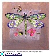 Животные, птицы и насекомые 46fe6d8d26aft