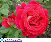 Specially for Karkela )))    Тестирование сербок и проч. Eb282ce4e6a1t