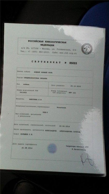 Моя веснушка-Уруш Алдаярович московский - Страница 4 1eaab1f95a4f