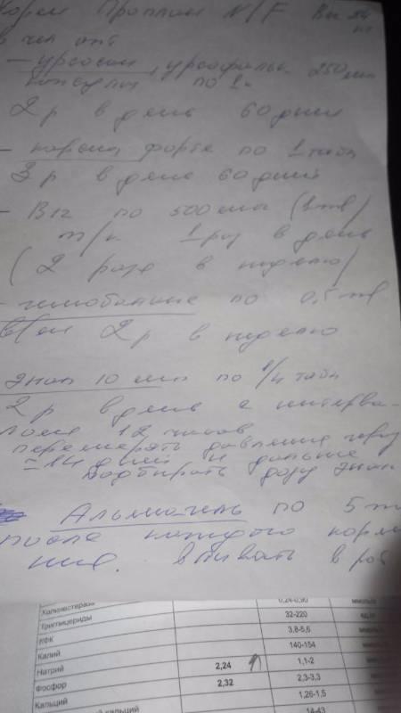 Москва, Пенелопа (Голдибокс Мокка), 03.12.2004 г.   - Страница 12 537e099fef94