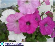 Рыськино СЧАСТЬЕ Ec8d90e49210t