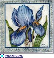 Цветы, букеты 69ef85bfa7d9t