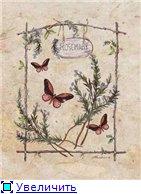 Животные, птицы и насекомые 7cf8abe465c2t
