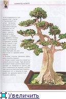 деревья-бисер 4d4f66a6d31at