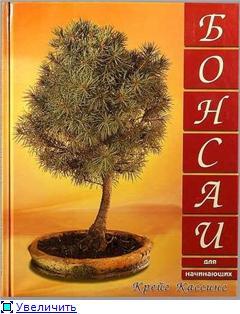 Книги о бонсаи 80c7ae219db0t