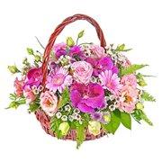 Поздравляем с Днем Рождения Ирину (Ирис)  73c373996dc0t