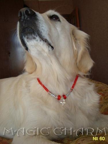 Magic Charm - ошейники, обереги, украшения и аксессуары для собак Ab8b4edd14c8