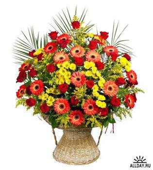 Поздравляем с Днем Рождения Татьяну (Татьяна777) 8fbf0087232at