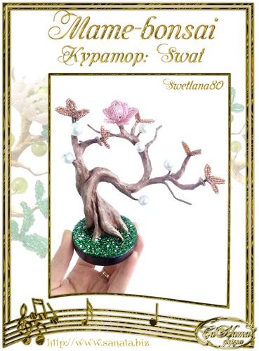 """Галерея """"Mame-bonsai"""" 0e28eb915cddt"""