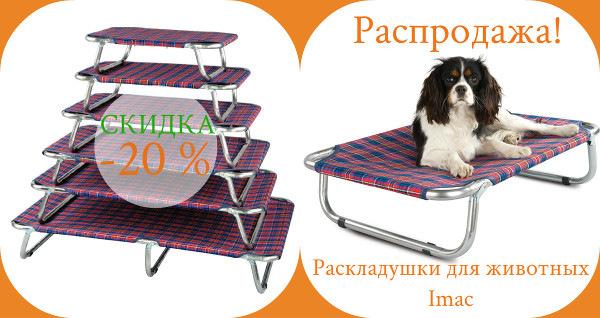 Интернет-зоомагазин Red Dog: только качественные товары для  - Страница 11 716812ab4319