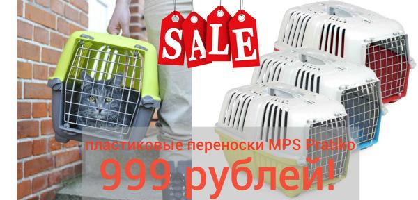 Интернет-зоомагазин Red Dog: только качественные товары для  - Страница 11 A750568a5862