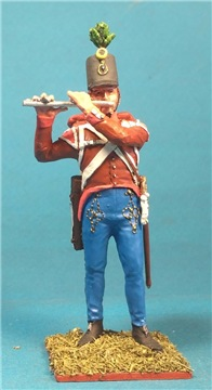 VID soldiers - Napoleonic austrian army sets - Page 2 4fc07dfc1a96t