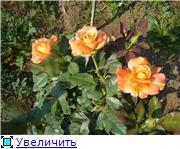 Specially for Karkela )))    Тестирование сербок и проч. 295b0709d1fet
