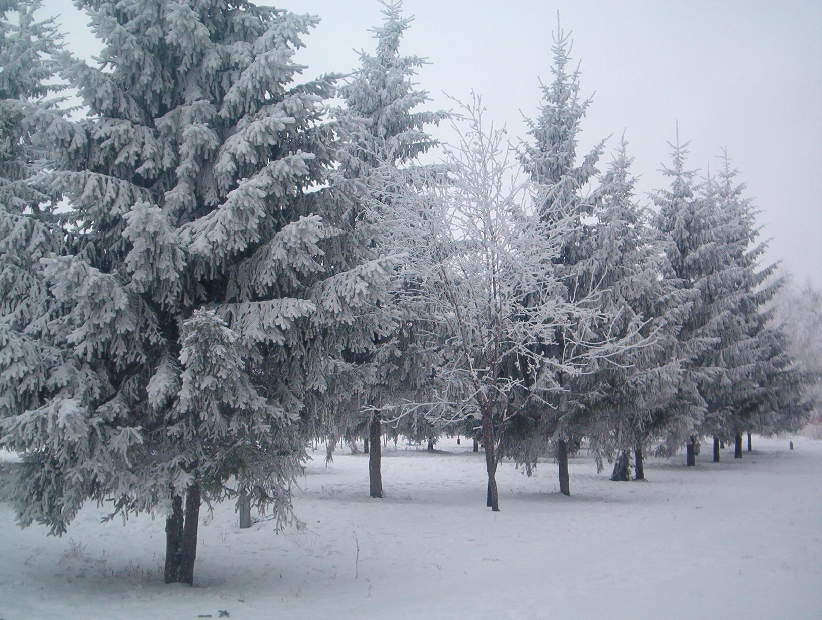 Фото Петра-Дубравы 554857301f42