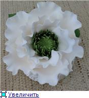 Цветы ручной работы из полимерной глины Be1c63dc2302t