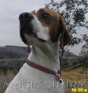 Magic Charm - ошейники, обереги, украшения и аксессуары для собак 8d24f198ded2