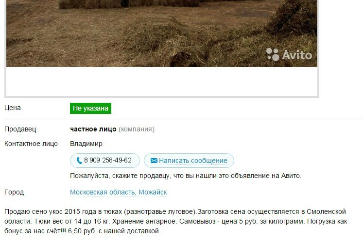 Москва, Кузя кобель д.р. 01.05.2014  - Страница 3 E51a517d0707