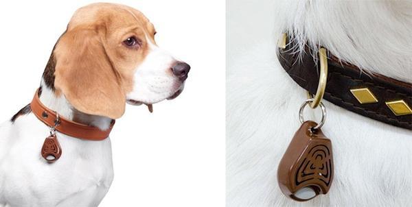 Интернет-зоомагазин Red Dog: только качественные товары для  - Страница 11 86e15246ca0c