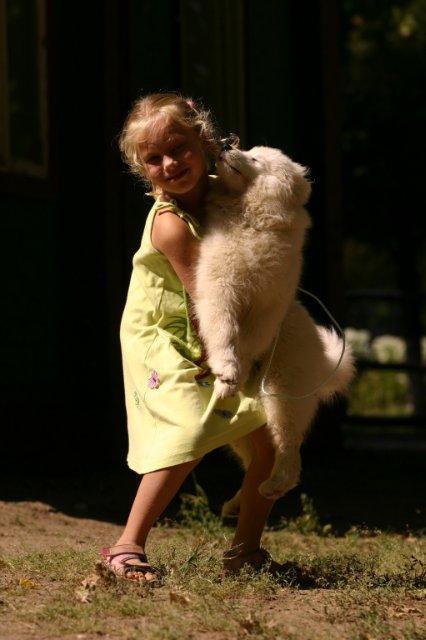 Воспитание щенка В СОЛНЕЧНОМ ГОРОДЕ - Страница 3 4453202c57d2