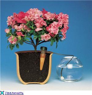 Автоматический полив растений 842d97098688t