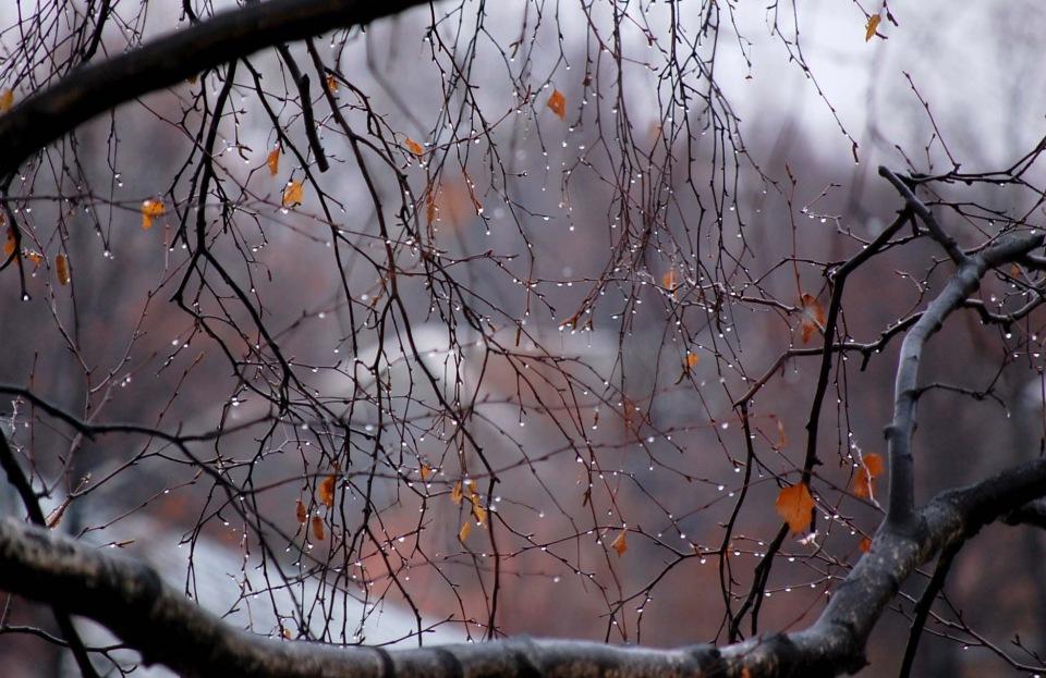 """КОНКУРС """"Осень: лучшее время года. """" 8eb251107740"""