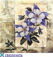 Цветы, букеты 041a61147692t