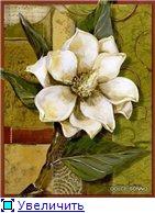 Цветы, букеты 11a47a98213at