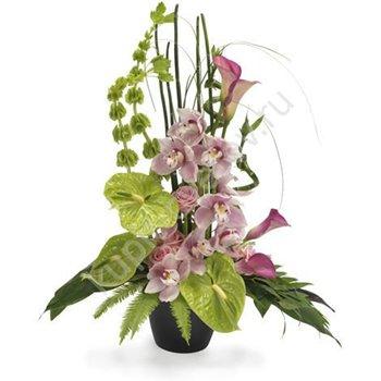 Поздравляем с Днем Рождения Марину (Заграйка) 60de373d3c56t