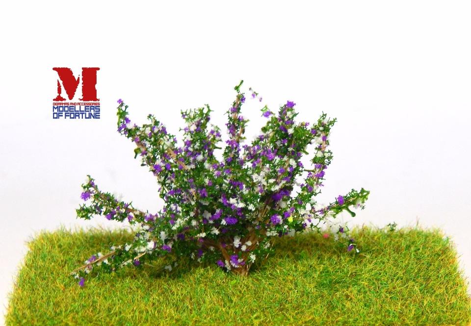 Новинки Modellers of Fortune - Страница 3 E13585145c66