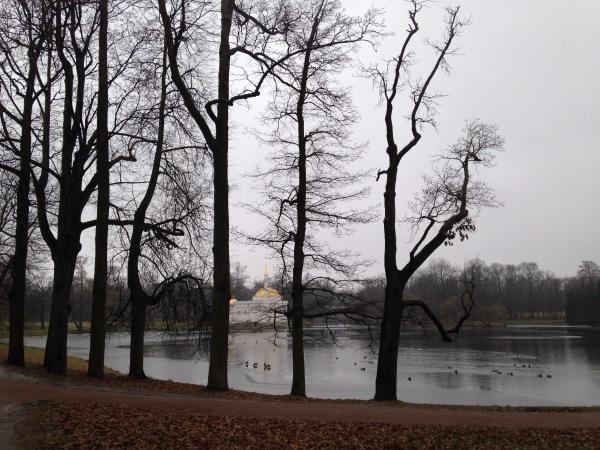 """"""" Есть городок в одном прекрасном парке...""""  ( Пушкин и Екатерининский парк ) - Страница 3 A6f3db962342"""