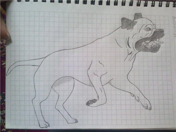 Ваши рисунки (художественное творчество) E874bf3abf4c