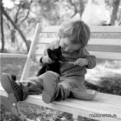 Сама по себе гулёна (о кошках) - Страница 2 0f0cb96cc051