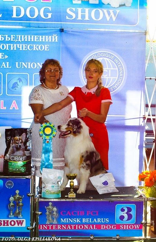 Выставочные успехи наших собак - 5 - Страница 30 E0dbebe60230