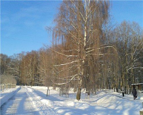Зимняя сказка на наших фотографиях - Страница 12 Bcfaa2134cf4