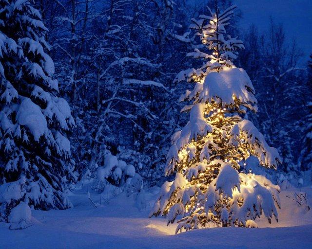 Новогоднее настроение и Поздравлялка с 2012)) 49cb8e6fa578