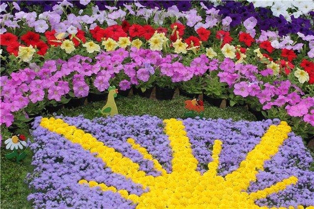 Фестиваль цветов в Алматы - «Алматы – гул кала» 7ee624896304
