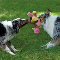 Интернет-зоомагазин Pet Gear - Страница 3 9fe6557a435d