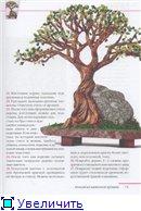 деревья-бисер E6e1b9eed24ft