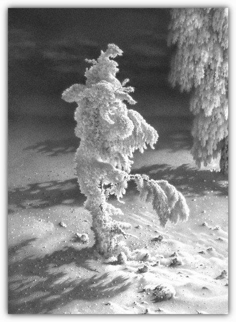 Снег, согревающий душу (Доленджашвили Г.) Ef2c220cb09b