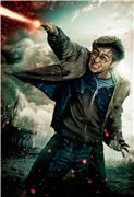 Гарри Поттер и Дары Смерти: Часть первая / Harry Potter and the Deathly Hallows: Part 1 (Уотсон, Гринт, Рэдклифф, 2010) 4ada740822f6t