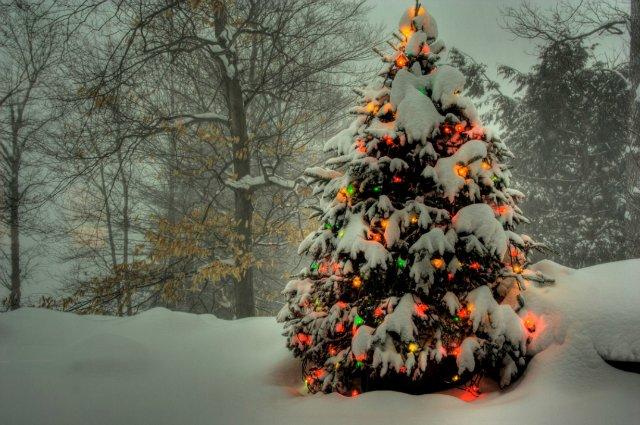 Новогоднее настроение и Поздравлялка с 2012)) 2a4128be8b84