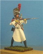 VID soldiers - Napoleonic Holland troops Df20c2fc31ebt