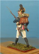 VID soldiers - Napoleonic wurttemberg army sets C1f73d3c25d0t