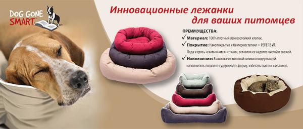 Интернет-магазин Red Dog- только качественные товары для собак! - Страница 7 0a580cc357c5