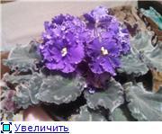 Рыськино СЧАСТЬЕ A2dcc48a8792t